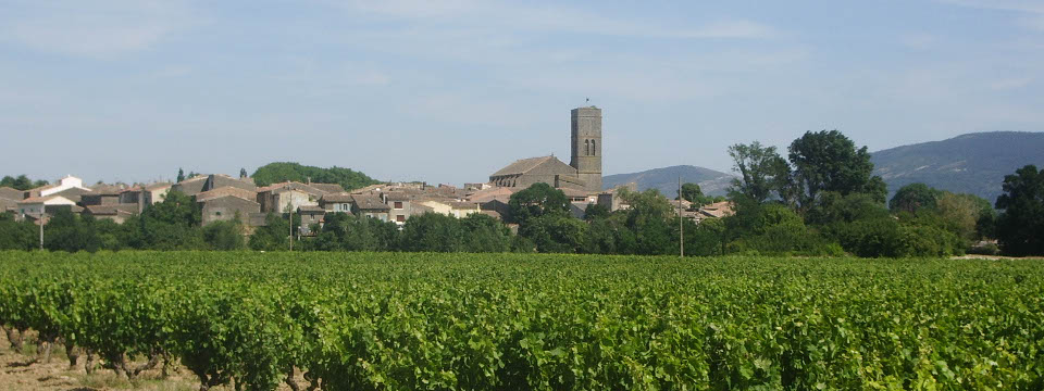 Trèbes, amidst vineyards